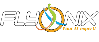 logo fly onix (1)
